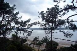 Plot Foz do Arelho, Silver Coast Ref :AP136