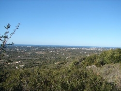 4 Bedroom Plot Santa Barbara de Nexe, Central Algarve Ref :DP6074