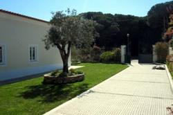 5 Bedroom Villa Obidos, Silver Coast Ref :AV829
