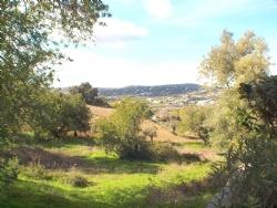 4 Bedroom Villa Sao Bras de Alportel, Central Algarve Ref :LV5356