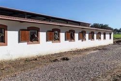 12 Bedroom House Avis, Alentejo Ref :ASV163