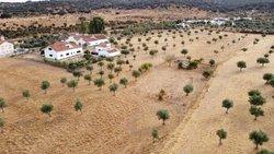 4 Bedroom House Santo Aleixo, Alentejo Ref :ASV160