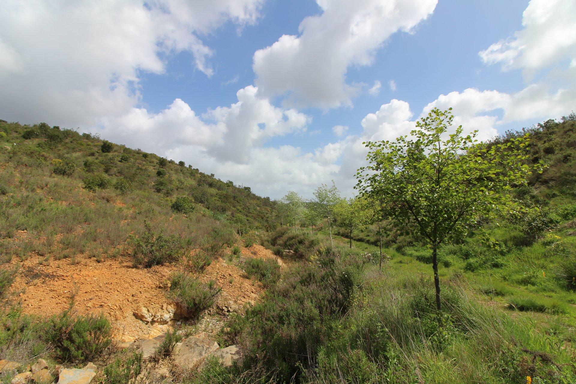 Plot Lagos, Western Algarve Ref: MP20301
