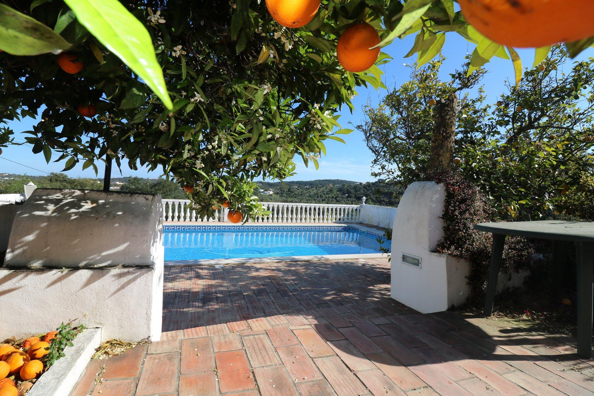 4 Bedroom Villa Sao Bras de Alportel, Central Algarve Ref: JV10348