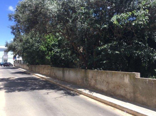 Plot Amadora, Lisbon Ref: AMP13406